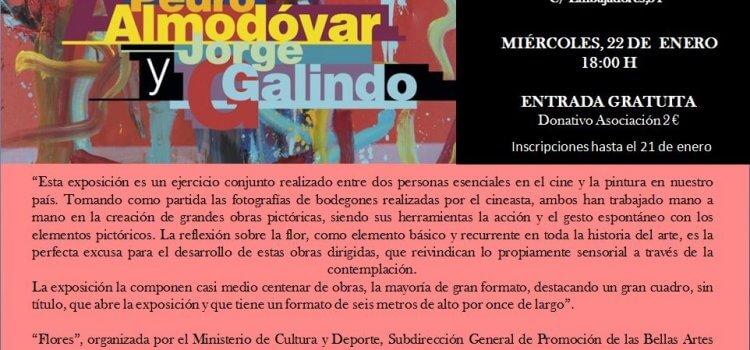 Visita a la exposición Flores. Pedro Almodóvar y Jorge Galindo